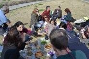 picnic vegetariano6