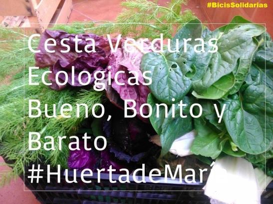 cestaverdurasecolgicas2 (1)